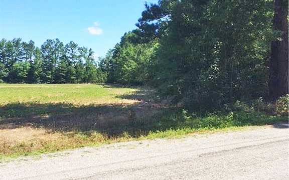 Road view of land located at 17.2ac Comans Well Road, Stony Creek, VA 23882
