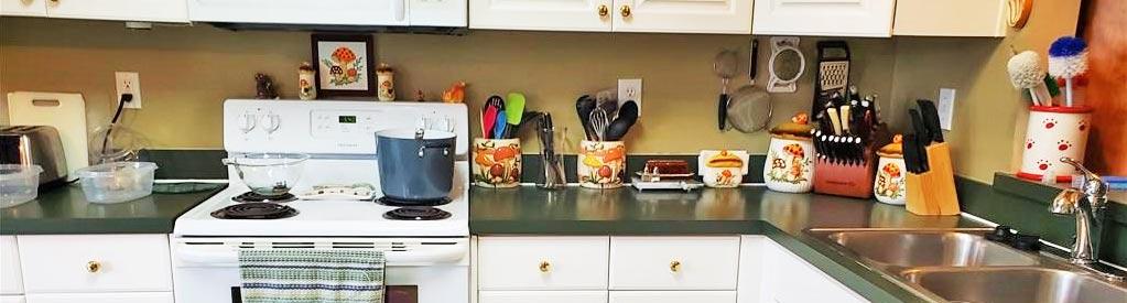 Kitchen of property located at 1705 Gunston Drive, Suffolk, VA 23434